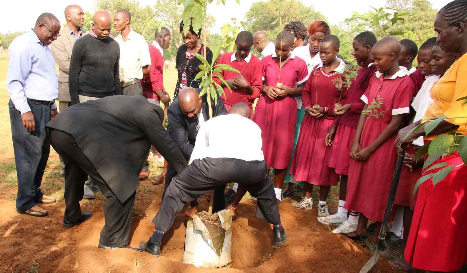 Tree Planting at Sinoko Primary School