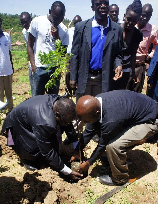 Kibabii University Tree Planting Day