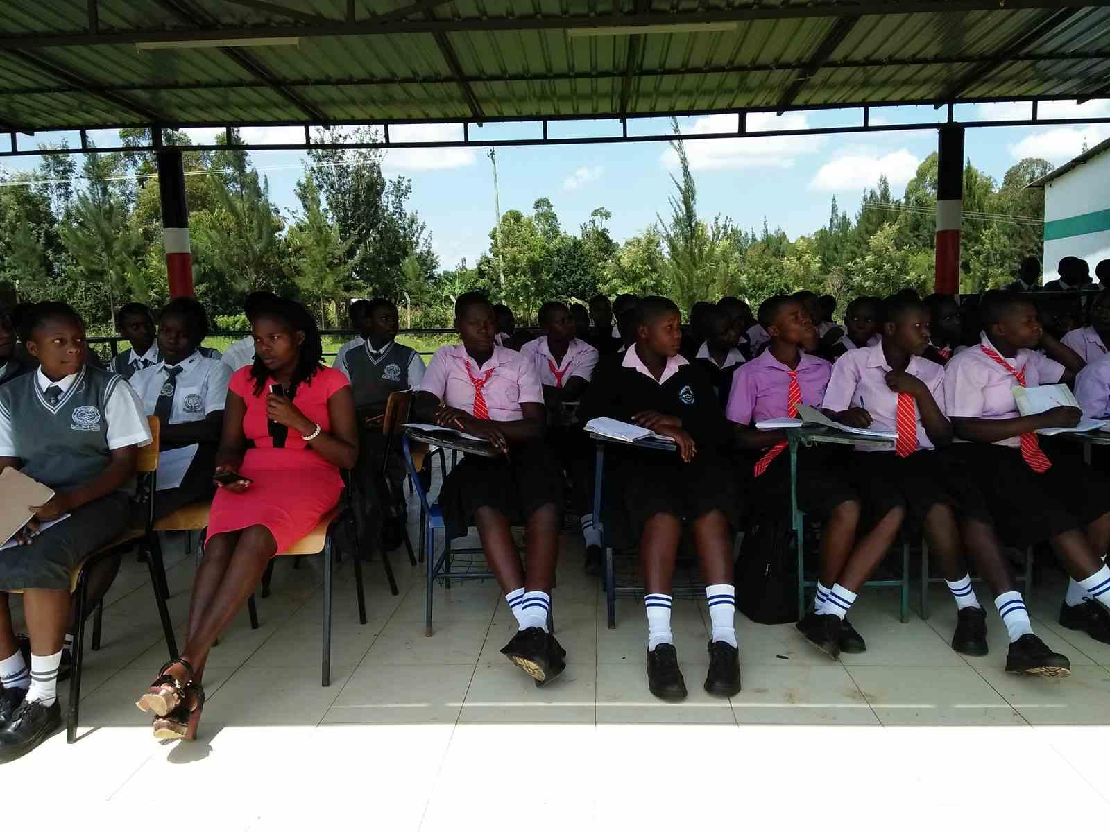 Mentoring Visiting School
