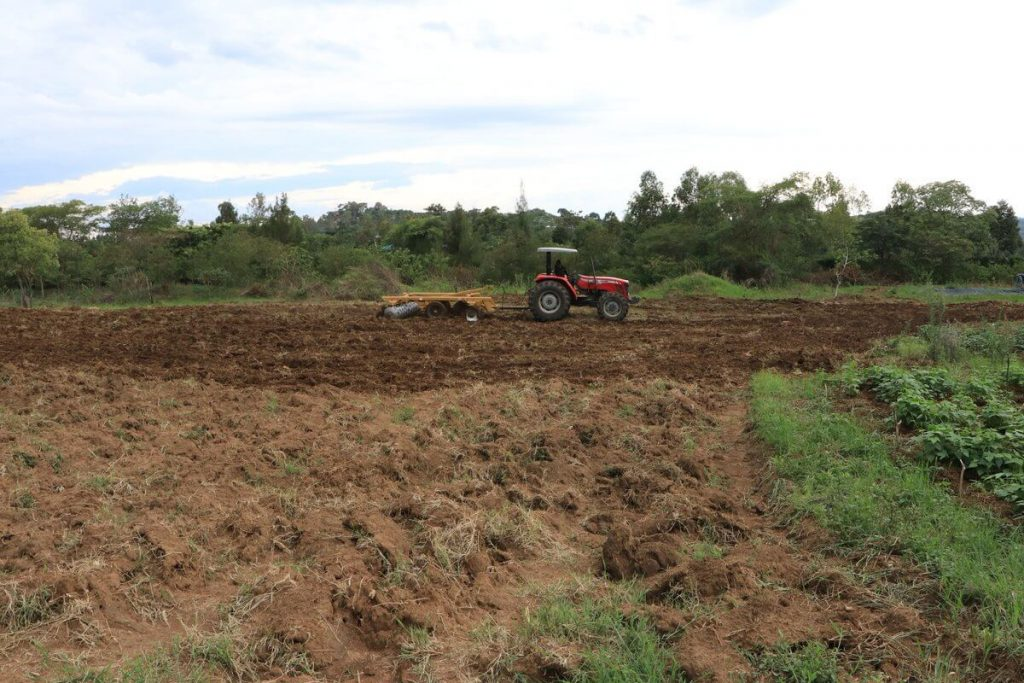 Income-Generating-Units-Ready-for-the-New-Planting-Season_1