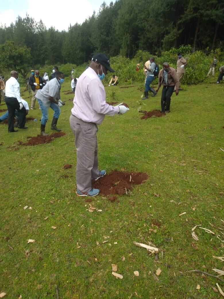 National Tree Planting Campaign 2020